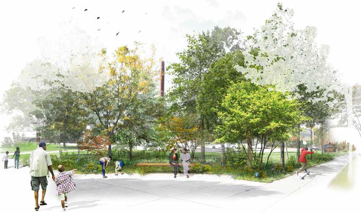 Anthem Arboretum rendering